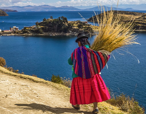 Woman walking with quinoa on her back alongside Lake Titicaca in Peru.